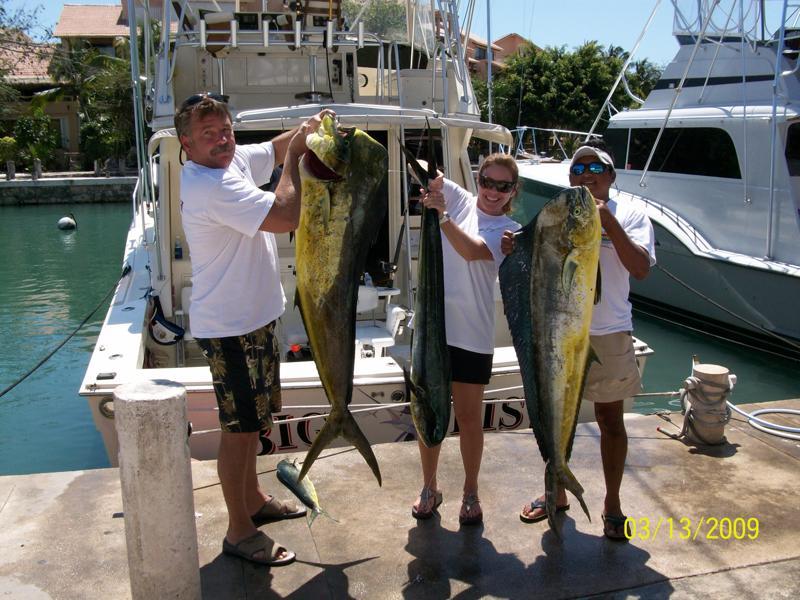 bigfish3