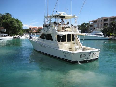 bigfish9