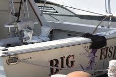 big-fish181