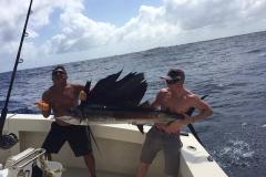 bigfish7