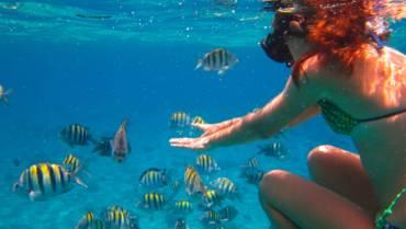 Cruisin' and Snorkelin'